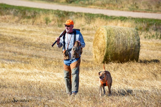 Brian Doering and his dog, Saylor, return with the group's first bagged pheasant of the day during the season opener on Saturday, October 19, in Mitchell.