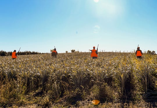 A group of pheasant hunters goes out for the season opener on Saturday, October 19, in Mitchell.