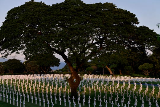 An acacia tree, its split trunk twining back toward itself, stands over grave markers at the Manila American Cemetery Friday Oct. 18, 2019.
