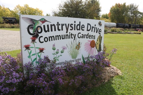 A master gardener offered a firsthand demonstration on how to plant fall garlic on Saturday at the Countryside Community Gardens in Fremont.