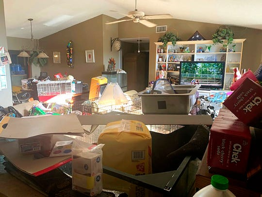 This Sunday, Oct. 20, 2019 photo made available by the Edgewater Police Department shows the interior of a home in Edgewater, Fla., where police found three children living with three adults and animals of various species in deplorable conditions.