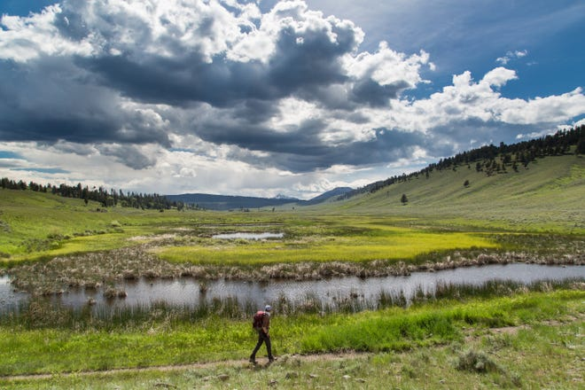 Backpackers in Yellowstone National Park are generally pleased with the overall experience even though their numbers have steadily climbed, according to a recently published survey.