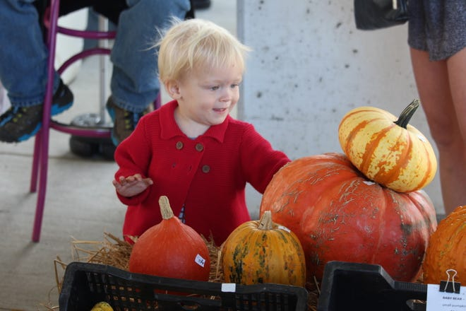 Each year the Memphis Farmers Market hosts a holiday market for Thanksgiving and Christmas. The 2019 dates are Nov. 23 and Dec. 14.