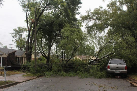 A tree was uprooted in between two homes in southeast Memphis blocking the street on Cottonwood Road after a storm moved through the area Monday, Oct. 21, 2019.