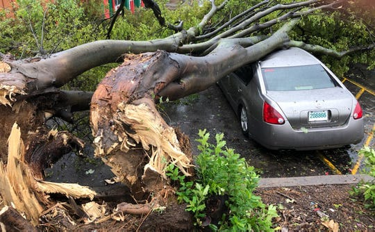 A tree fell on a car on American Way near Perkins Road following storms that moved through the city on Monday, Oct. 21, 2019.