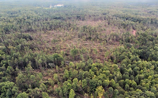 An aerial view of damage to the Chequamegon-Nicolet National Forest west of Highway 32, about four miles south of the town of Lakewood in Oconto County in northern Wisconsin.