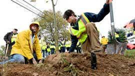 Rotary clubs remake post-war tree memorial along Susquehanna Trail