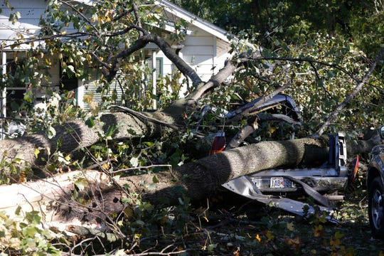 A fallen tree smashed a truck in the area of Walnut Street and Barnes Avenue.
