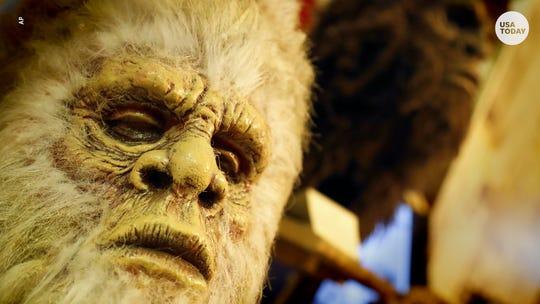 Explore Georgia's roadside Bigfoot museum, devoted to the search for Sasquatch