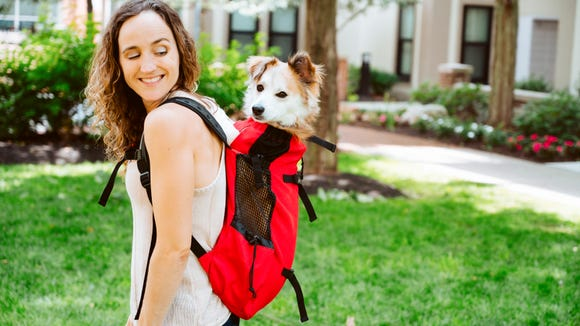 Gifts our editors love 2019: K9 Sport Sack
