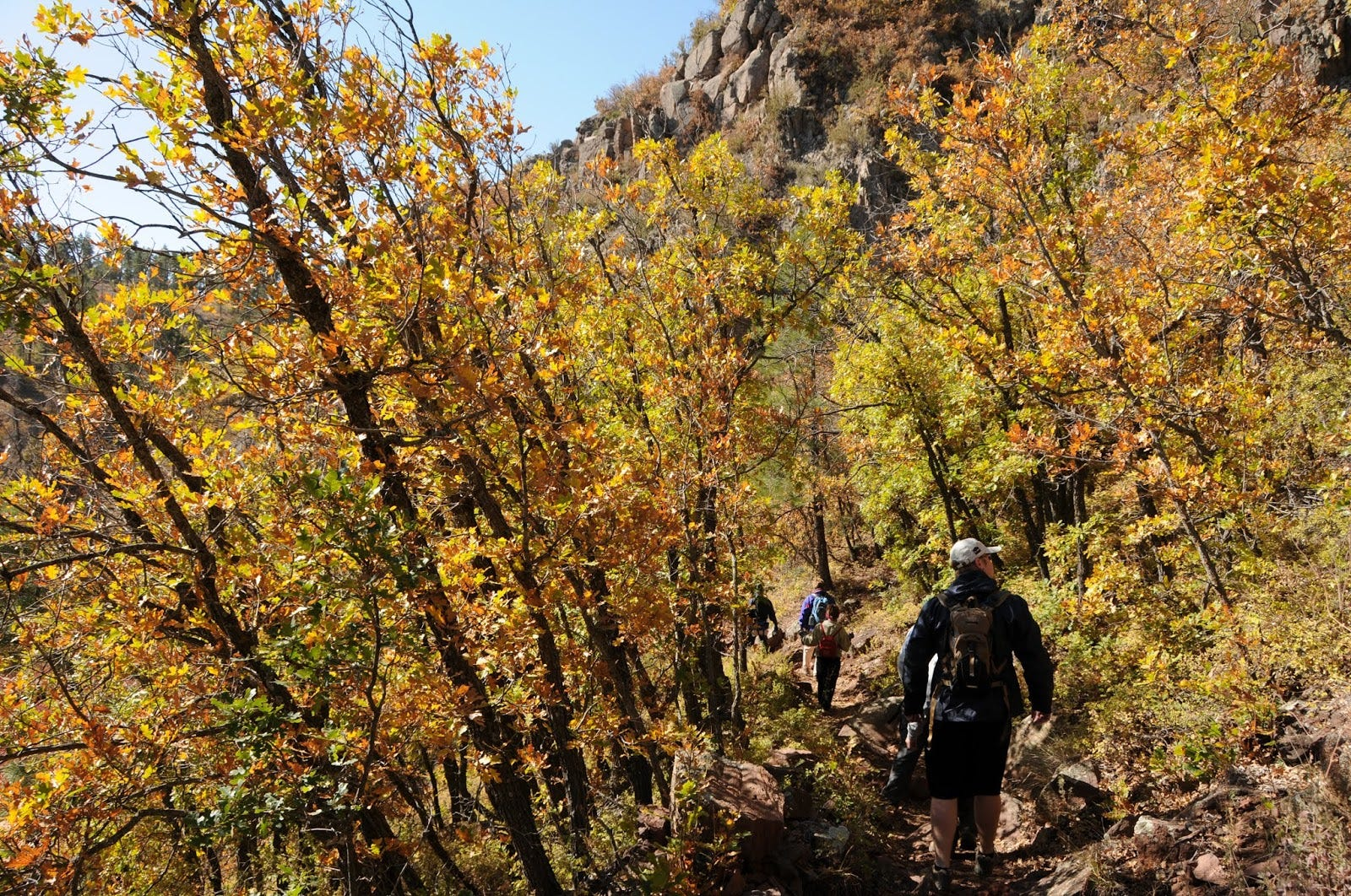 Looking for fall colors in Arizona? Try these less-known hiking trails