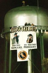 Cowhide banner