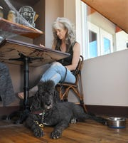 Jennifer Cleveland, who is legally blind, relies on her service dog, Frank, to maintain her independence. Frank remains on the floor while Cleveland has lunch at Le Crepe de France in downtown Melbourne.