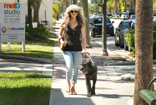 Jennifer Cleveland is legally blind and has very limited vision. Her service dog, Frank, guides her back home after lunch at Le Crepe de France in downtown Melbourne.