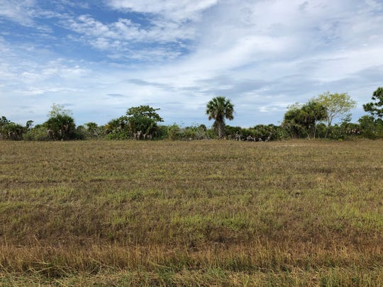 The City of Cape Coral is offering property owner Thereza Dean $100,000 for this lot to build a new city park. There's just one problem: She paid $183,000 for it.