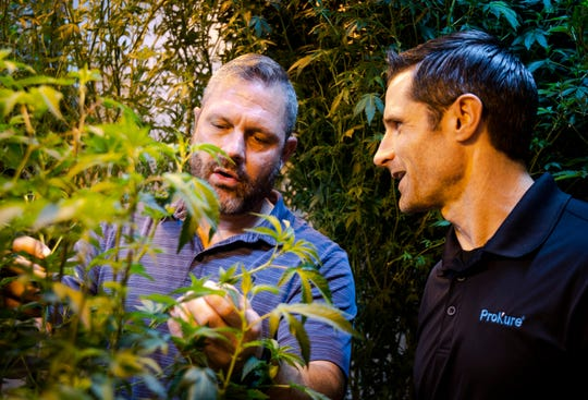 Pure Products owner and cultivator Lonnie Hochstetler and ProKure president Alex Cushman discuss medical marijuana plants at the Pure Products growing facility in Tempe.