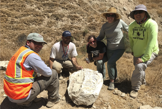 Experts pose with the 600-pound stone block encasing a torso fossil, found in July in Simi Valley. They believe the fossil is about 15 million years old. From left: Austin Xu, Russell Shapiro, Win McLaughlin, Maisie Borg and Sunny Lee.