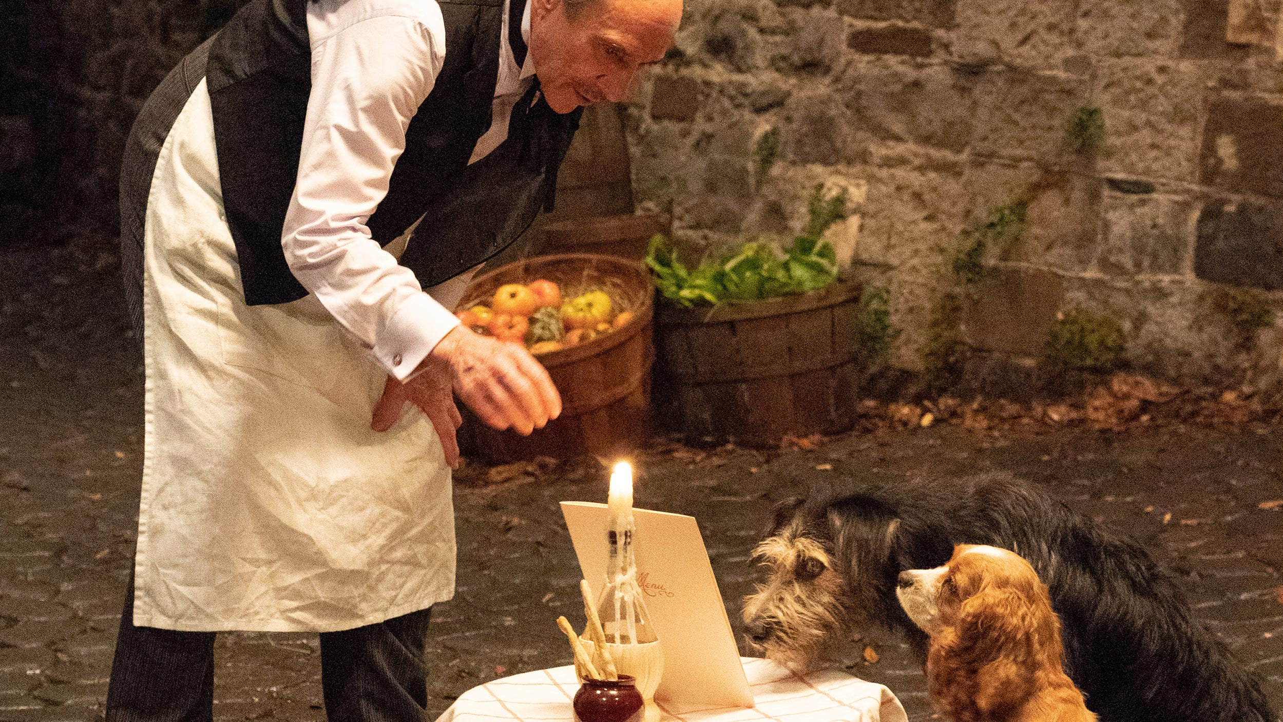 Disney Lady And The Tramp How Dog Stars Remade The Classic Dinner
