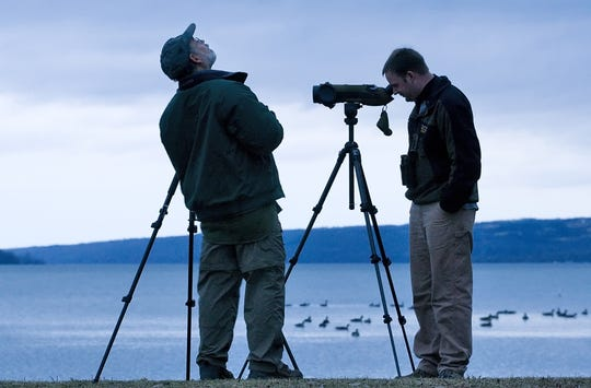 Ken Rosenberg, left, the director of conservation science at the Cornell Lab of Ornithology, and Chris Wood, the Ebird project leader at the lab, observe waterfowl in 2007 at Stewart Park in Ithaca.