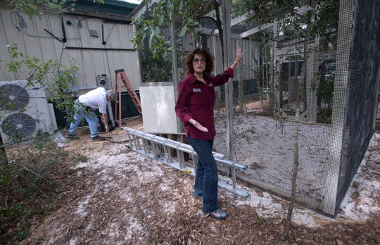 Stormy Andersen, executive director of Emerald Coast Wildlife Refuge, tours the organization's new campus in Navarre on Thursday as contractors continue working ahead of the refuge's expected opening in December.