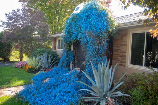 The Cookie Monster covers the front door to Lisa Boll's house in the 500 block of Chestnut Hill Road in York Township.
