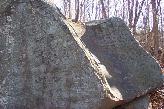 Cooling cracks in the diabase at the former Pinchot Park Toboggan Run.  Notice the circular shape of the boulder due to spheroidal weathering.