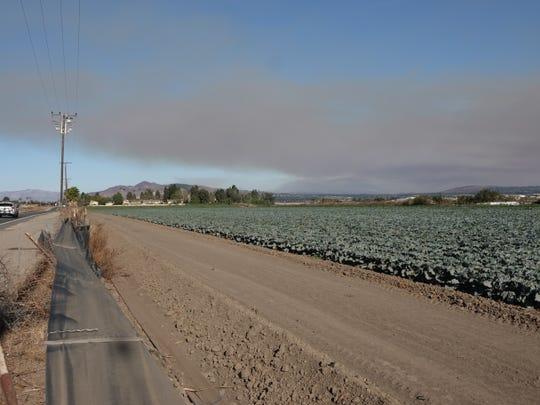 Smoke from a brushfire in Santa Clarita Thursday afternoon blows toward Ventura as seen on Bristol Road.