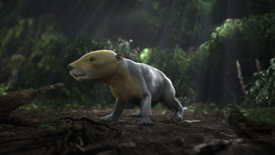 An artist's conception of a Taeniolabis, one of the ancient mammal species that arose after the dinosaurs were wiped out.