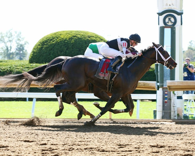 South Bend and jockey Julien Leparoux win at Keeneland on Oct. 5, 2019.