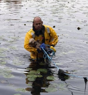 A dog is rescued from a pond in Denville Oct. 25, 2019.