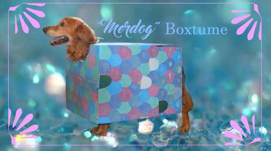 The merdog box costume is a fun, creative look that will make your dog stand out this Halloween.