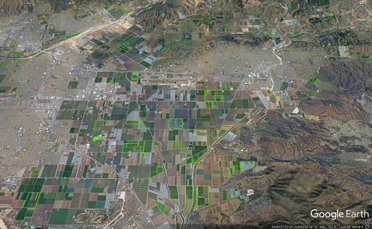 A map displaying all the areas growing industrial hemp on the Oxnard plain west of the city of Oxnard and south of the city of Camarillo. Hemp grows are outlined in green.