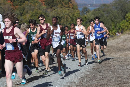 The boys varsity race goes up a hill at the annual Westchester County Cross-Country Championship at Croton Point Park in Croton Oct. 26, 2019.