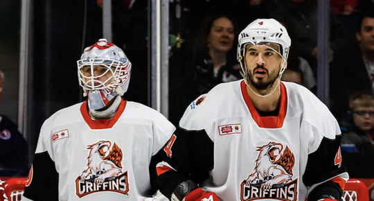 Jonathan Ericsson and Filip Larsson watch the play during Saturday's 6-4 win over Texas in Grand Rapids.