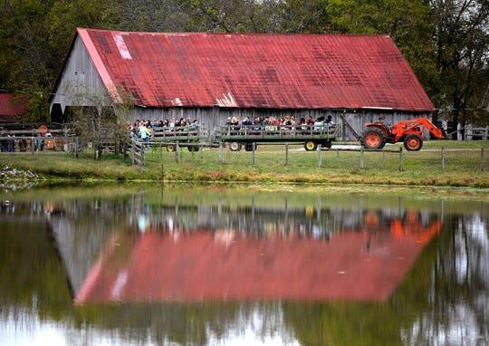 Families visit Gentry Farm for some fall fun, including a wagon ride around the seventh-generation farm in Franklin on Oct. 27, 2019. This is the 29th year that the Gentrys have opened their farm to the public during the fall. Farm activities include wagon rides, a corn maze, tire swings and a nature trail.