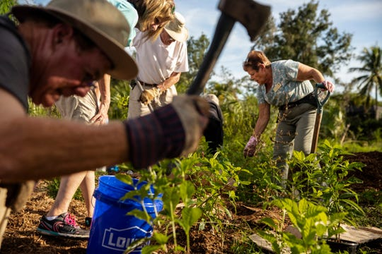 From left to right, Jim Brookover, Deb Ross, Jack Comstock, and Peg Comstock plant shrubs during the Interfaith Service Day on Sunday, Oct. 27, 2019, at Temple Preservation and Community Gardens in Fort Myers. Local congregations and members of different faiths come together to honor those who lost their lives in the Pittsburgh synagogue shooting a year ago.