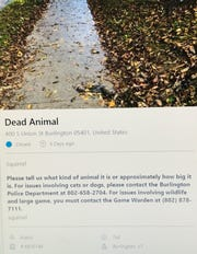 Vermonters are taking to the online forum SeeClickFix to report dead animals, and authorities are taking swift action.