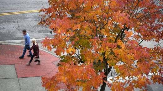 All about fall: Peak leaf time, Halloween forecast and daylight saving time
