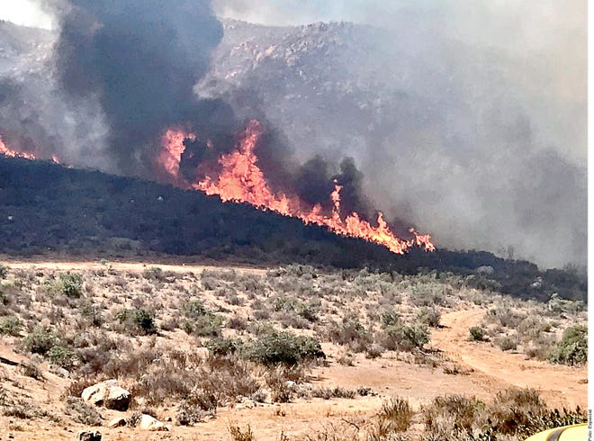Los incendios en Baja California han afectado 9 mil 880 hectáreas y han cobrado la vida de tres personas, reportó ayer la Coordinación Nacional de Protección Civil (CNPC).