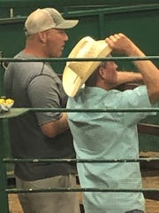 Mike McBarron looks at horses while attending an auction in August.