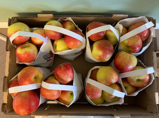 North Bay Produce of Traverse City is recalling apples for listeria risk.