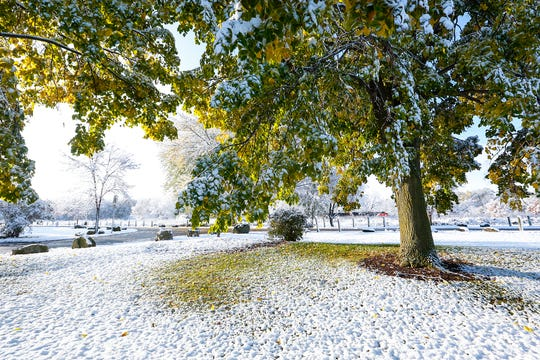 Trees became covered in snow Tuesday, Oct. 29, 2019, in Lakeside Park West after an early season layer of wet snow blanketed the area.