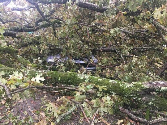 Chancy Gray's car was crushed by a falling tree during a powerful storm in Adamsville, Tenn. on Oct. 26, 2019.