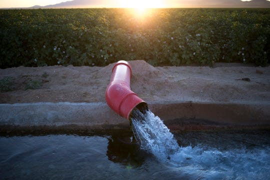 Groundwater is pumped into a canal at LKH Farming's Salome Farm.