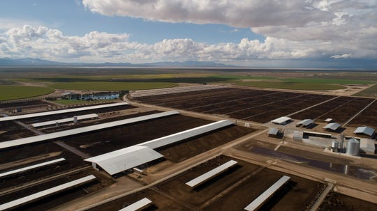 The company Riverview runs the dairy Coronado Farms on Kansas Settlement Road south of Willcox.