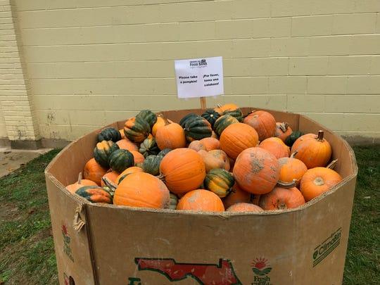 Pumpkins at the Franklin Food Bank
