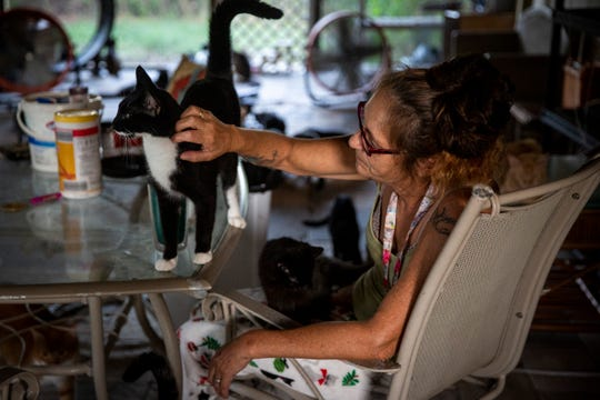 Tammy Nemec pets one of her rescue cats at her home in North Fort Myers on Wednesday, October 30, 2019.