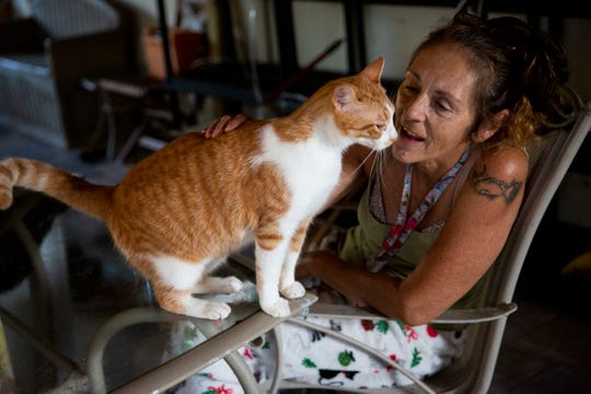 "Tammy Nemec pets one of her 83 rescue cats at her home in North Fort Myers on Wednesday, October 30, 2019. Nemec has struggled with drug and alcohol addiction in the past, and she says that when she started rescuing cats nearly six years ago they helped her to control her substance abuse. ""They just filled something for me,"" she said."