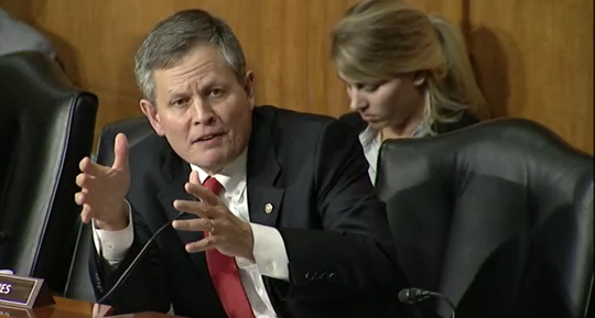 Sen. Steve Daines speaks Wednesday about Medicaid during a Senate subcommittee hearing.