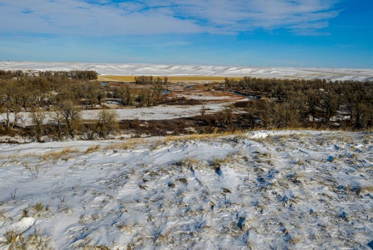 Block management area #193, a 280 acre block of land on the Teton River north of Dutton that was acquired by Pheasants Forever from a private land owner in 2018.